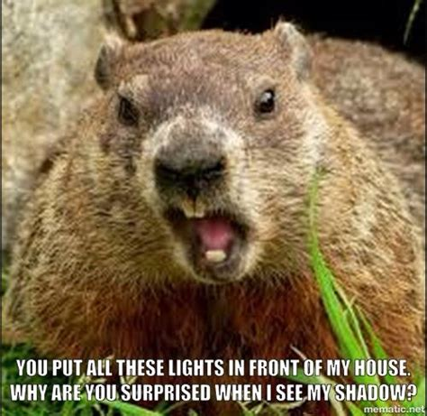 Groundhog Meme - a groundhog s day meme by me funny memes pinterest