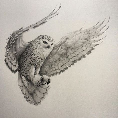 flying owl tattoo designs 25 best ideas about owl tattoos on owl