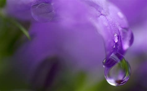 wallpaper abyss water drop water drop full hd wallpaper and background 1920x1200