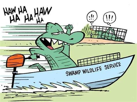 airboat competition 17 best images about sw cartoons by gary clark on
