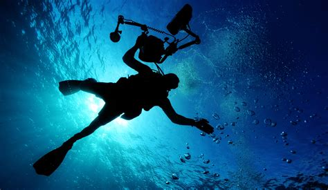 foto dive a diving photographer with underwater 4k ultra hd