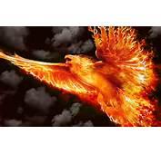 Firebird By Welshdragon On DeviantArt