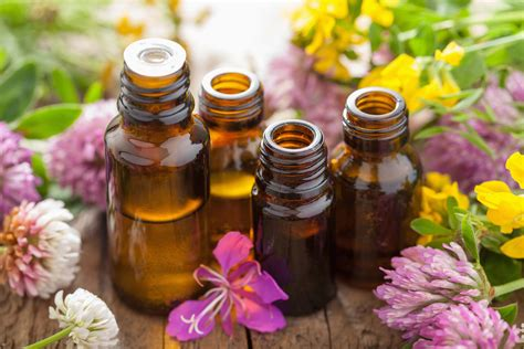 essential oils for skin allergies essential oils for allergies in dogs symptoms causes diagnosis treatment