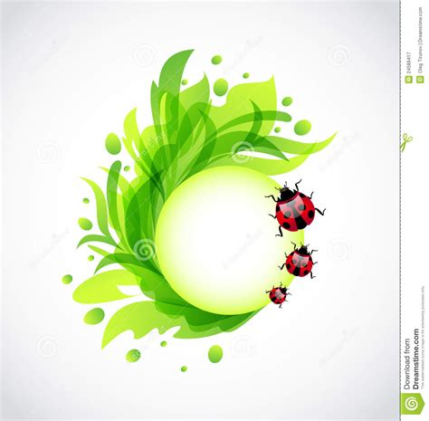 imagenes jpg transparentes fondo transparente floral de eco con los ladybugs