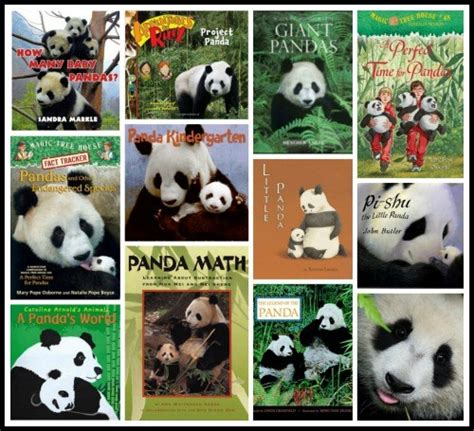 panda picture book panda facts for books crafts and learning