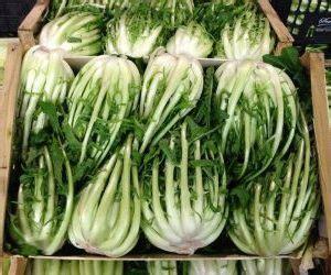 gli alimenti che contengono calcio alimenti che contengono calcio ecco i 15 vegetali che ne