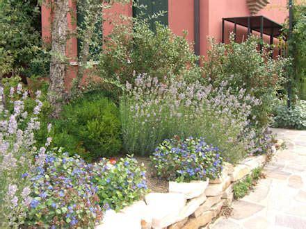 giardini foto immagini giardino idee immagini e decorazione homify