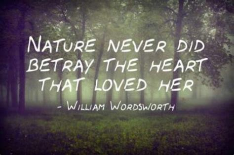 Nature Quotes 10 Images About Inspirational Nature Quotes On