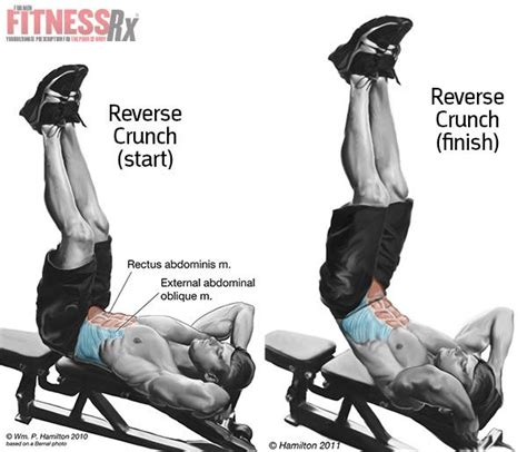decline bench reverse crunches fat shredder diet menu decline reverse crunch lower abs