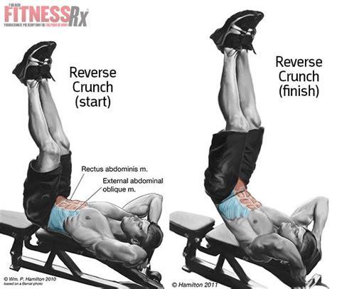 reverse crunch on bench fat shredder diet menu decline reverse crunch lower abs shoulder exercises for mass scooby