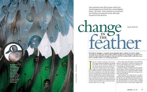 design magazine exles magazine layout exle editorial design time