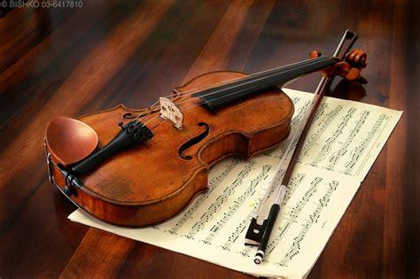 Biola Violin 1 4 ceritera yang tak sudah biola