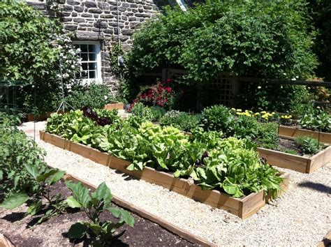 Backyard Vegetable Gardens by Vegetable Garden