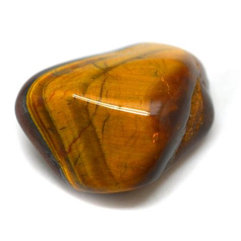 meaning of tiger eye orange tigers eye images photos and