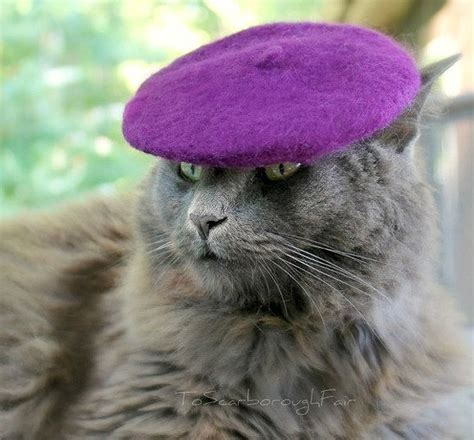 Cat Beret Hat colorful cat hats give your cat some style bit rebels
