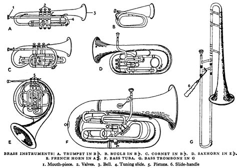 instrument family coloring page aula de tromb 211 n activa audici 211 n de trompeta trompa y tromb 211 n