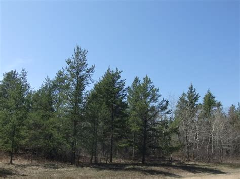 boats for sale in hstead nc vacant lot for sale 0 lakeshore rd belair manitoba canada