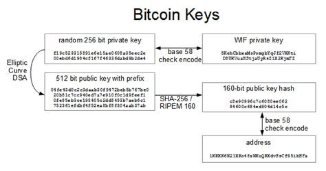 bitcoin algorithm bitcoins the hard way using the raw bitcoin protocol