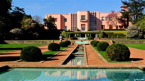 esn porto guided tour to serralves foundation esn porto