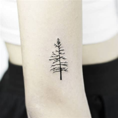 simple tree tattoo minimalistic tree artist stella lu 248 s