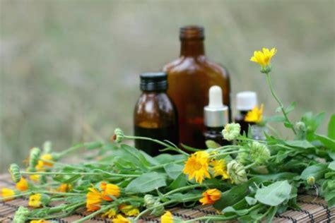 fiori di bach per fame nervosa fame nervosa tra i rimedi i fiori di bach dietaland