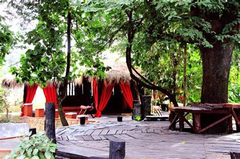 la faune resort kanha national park hotel reviews