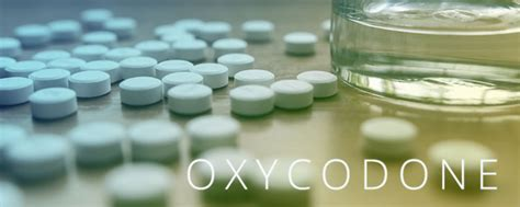 Nys Detox Facilities For Benzos by Oxycodone Addiction Symptoms When To Get Help Find
