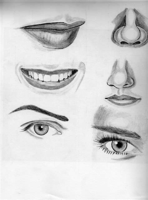 sketchbook learn to draw how to draw with pencil pencil drawings sathish