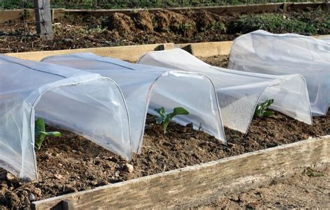 Award Winning Garden Writer Barbara Pleasant Discusses How Vegetable Garden Row Covers