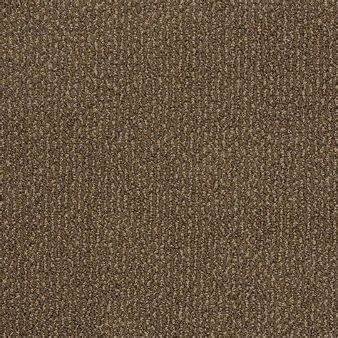 home decorators collection carpet sle braidley in color dried herbs 8 in x 8 in sh home decorators collection braidley b color mocha
