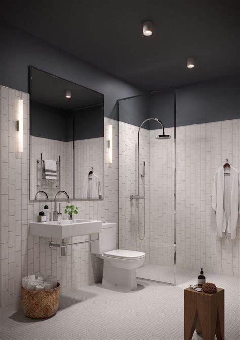 type of paint for bathroom ceiling bathroom ceiling color ideas www energywarden net