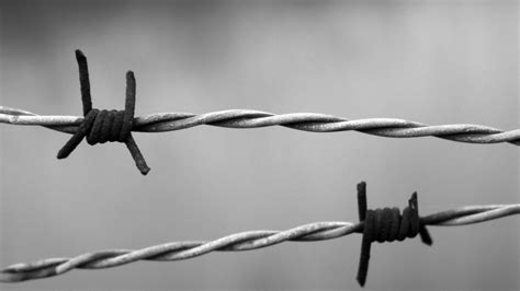 wire background 19 hd barb wire wallpapers hdwallsource