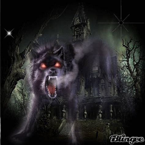 evil wolf picture 126215438 blingee com