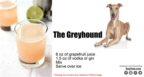 cocktail dogs 10 inspired cocktails for your dogtime