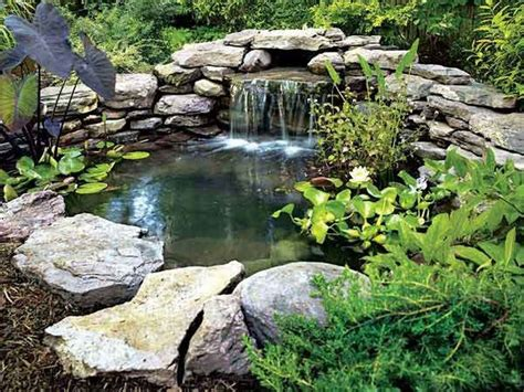 backyard ponds diy diy garden pond garden pinterest