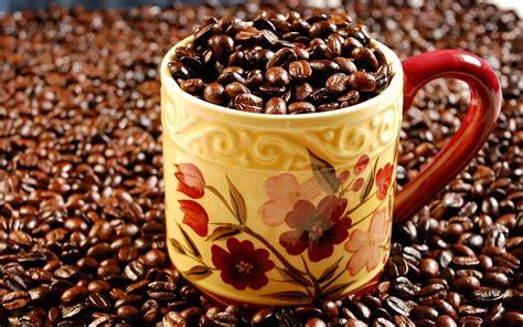 en cafe de la 8433974866 curiosidades del caf 233 paola bornacelli