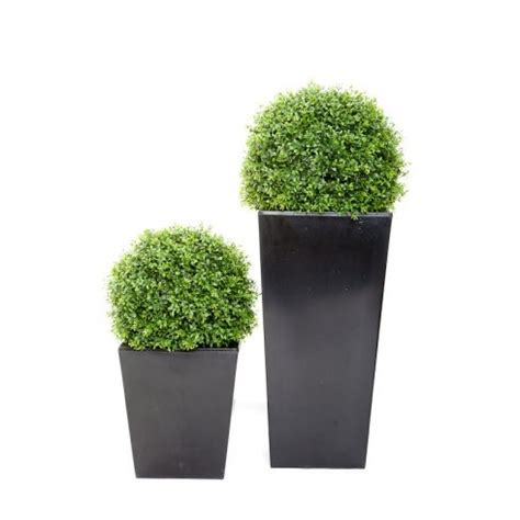 topiary balls in planters artificial topiary outdoor boxwood balls buxus