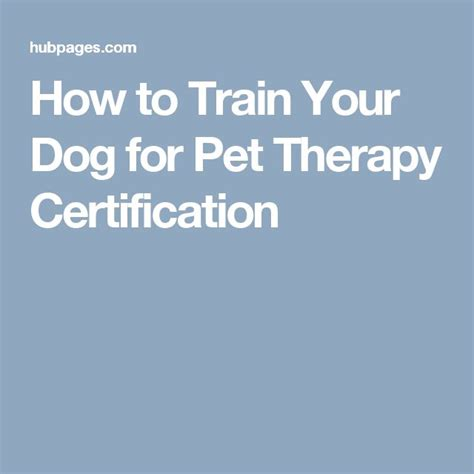how to your for pet therapy 17 best ideas about certification on therapy