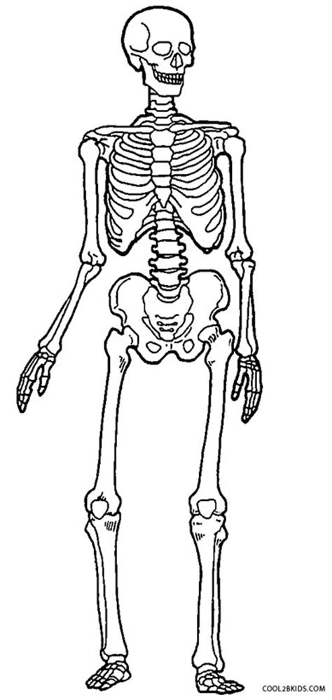coloring skeleton printable skeleton coloring pages for cool2bkids