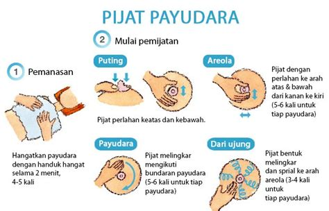 3d Massager Alat Pijat Wajahtubuh Pelancar Sirkulasi Darah perawatan payudara pada ibu nifas anggraenipuspadewi
