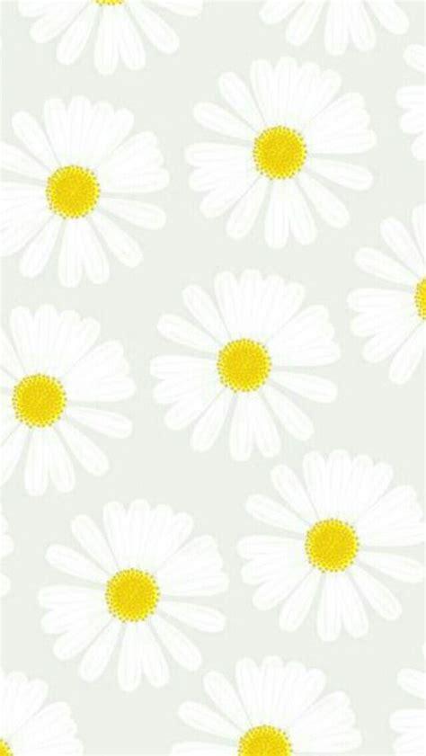iphone wallpaper yellow flower grey white yellow daisies daisy flowers iphone phone