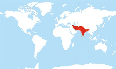 south asia world map where is south asia located on the world map mexico map