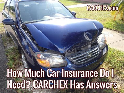 how much is insurance how much car insurance do i need carchex has answers