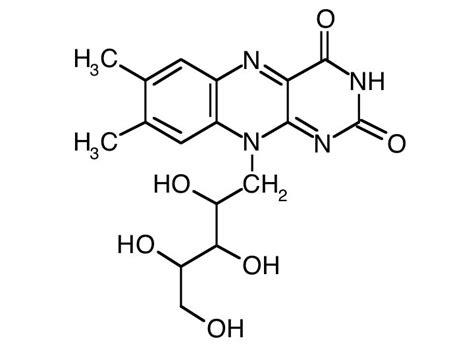 alimenti ricchi di albumina riboflavina vitamina b2 carenza sintomi e soluzioni