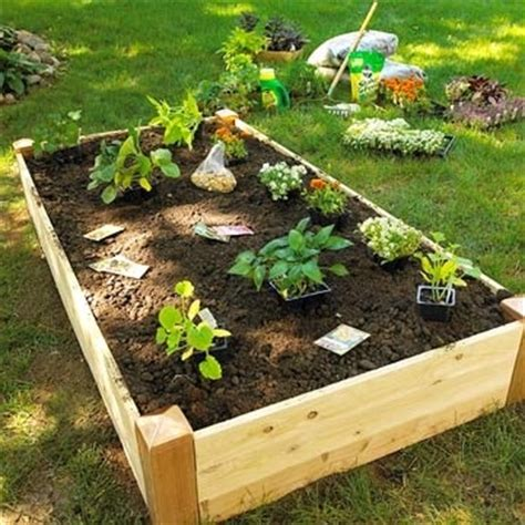 vegetable boxes for the garden garden boxes for vegetables grow