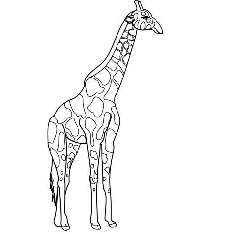 Giraffe Coloring Pages 3 Coloring Pages To Print Coloring Pages Giraffe