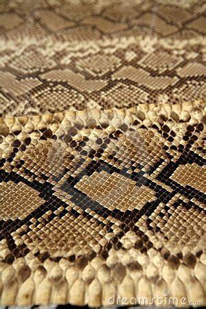 brown pattern snake background snake skin pattern brown stock photo image
