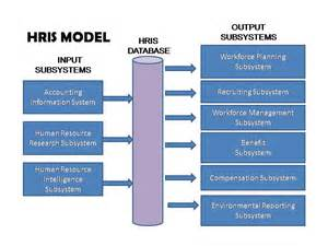 Hris Specialist by Project Of Human Resources Information System Reflective Topic In Week 7 Hris Model