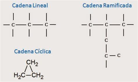 cadenas carbonadas no ramificadas tipos de carbono y cadenas ciencias qu 237 mica y biolog 237 a