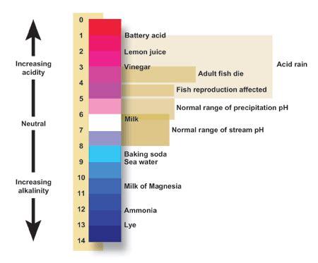 Alat Pengukur Ph Sederhana cara mengukur ph air sederhana hari sanusi